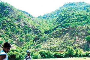 En Challapata, Aiquile y Padcaya se adaptan al cambio climático