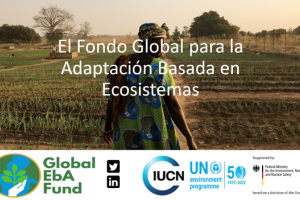 Fondo Global para la Adaptación Basada en Ecosistemas