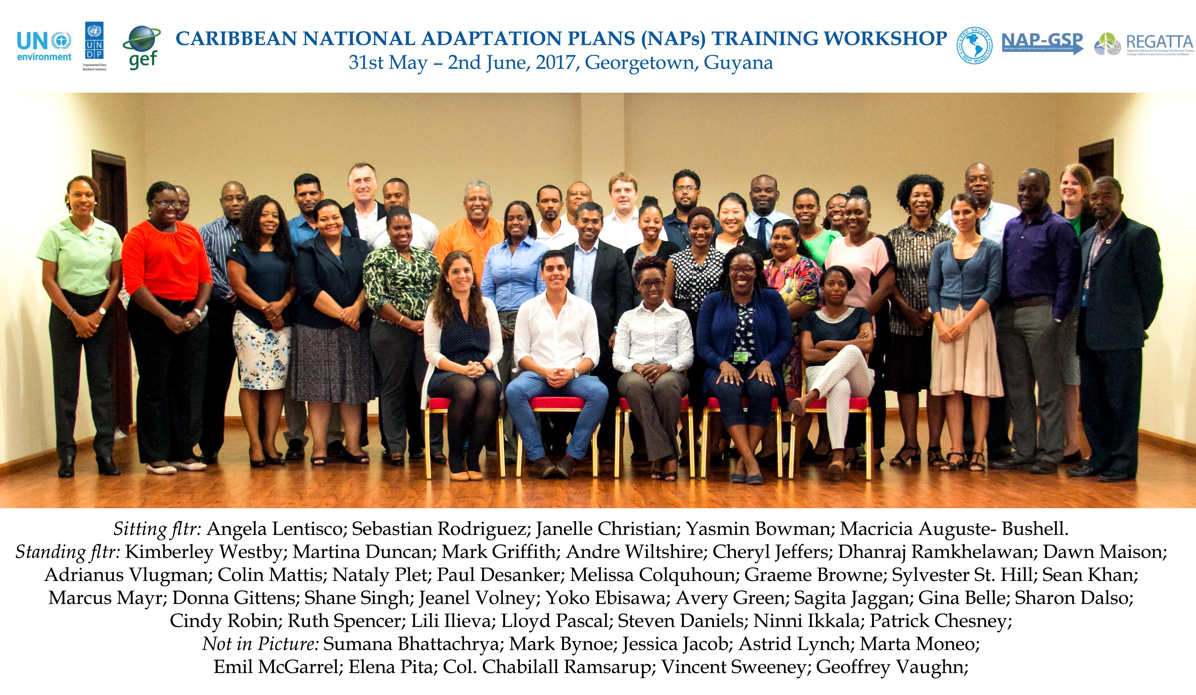 2017, Georgetown, Guyana- Caribbean NAP Training Workshop